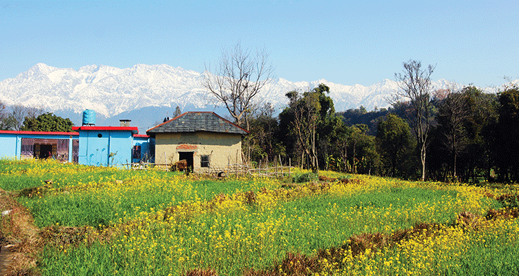 5 days, 1250 kms, Road Trip Across Surreal Himachal
