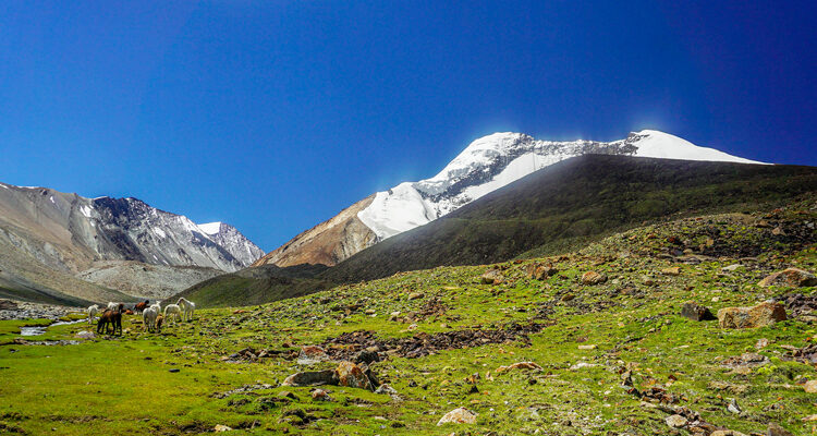 Stok Kangri: Learning How to Dance with Lightning